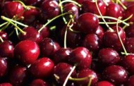 Market Street has California Red Cherries