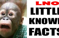 Little Known Facts from January 08, 2011