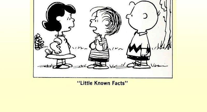 Little Known Facts First Published January 7, 2005 -- He was hired to find Brandon's Kidnapped Son